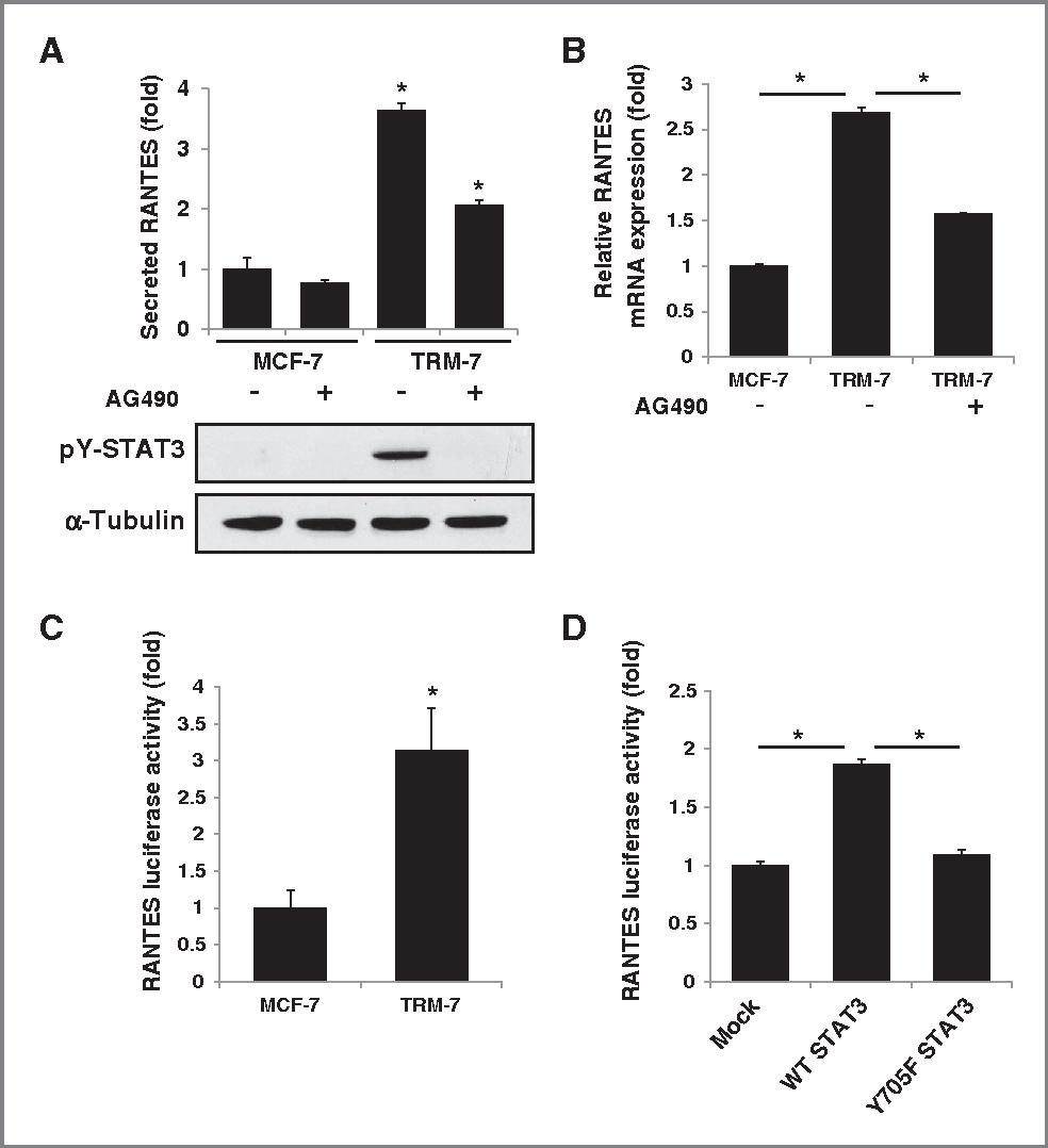 Tamoxifen resistance in breast cancer elucidating mechanisms of injury