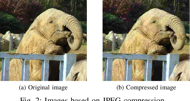 Figure 2 for Feature-Filter: Detecting Adversarial Examples through Filtering off Recessive Features