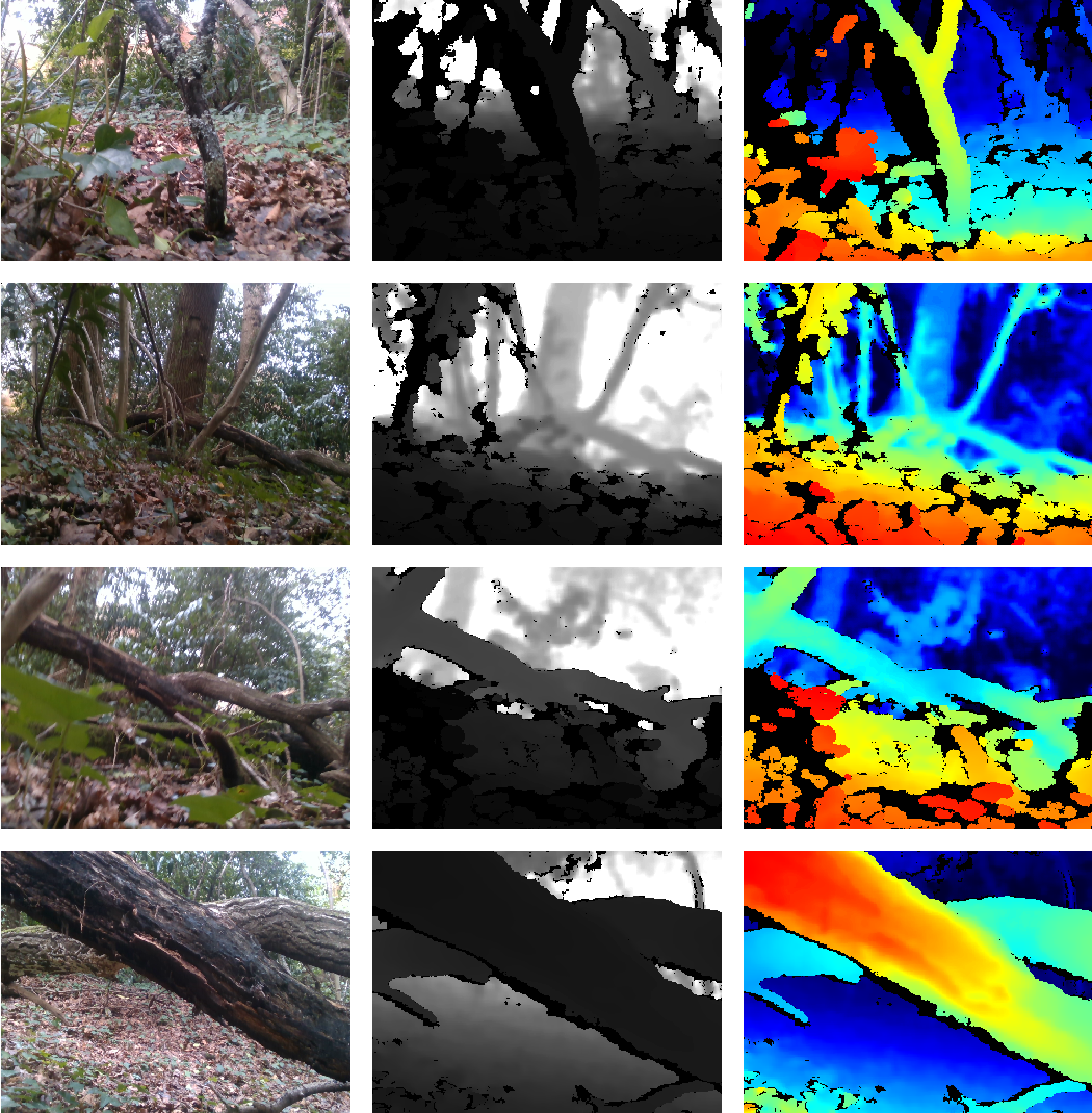 Figure 3 for Low-viewpoint forest depth dataset for sparse rover swarms