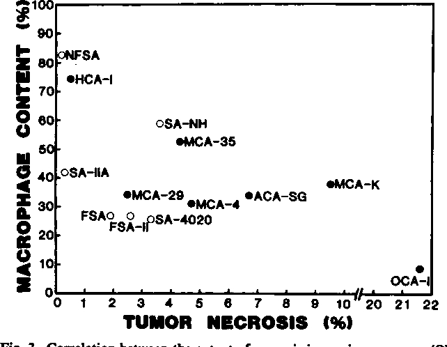 Fig. 3. Correlation between the extent of necrosis in murine sarcomas (O) or carcinomas (•)and TAM content. Correlation coefficents are -0.47 for sarcomas, -0.79 (P < 0.05) for carcinomas, and -0.58 (P < 0.05) for all tumors tested.