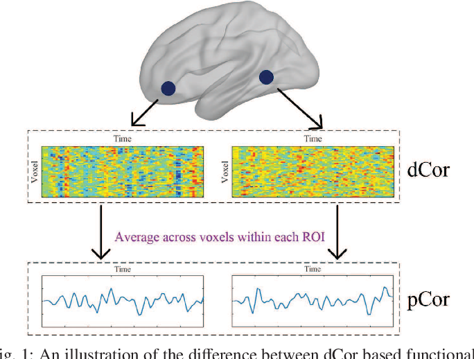Figure 1 for Distance Correlation Based Brain Functional Connectivity Estimation and Non-Convex Multi-Task Learning for Developmental fMRI Studies