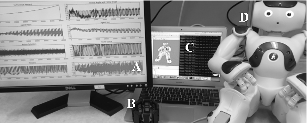 Figure 1 for Simultaneous Control and Human Feedback in the Training of a Robotic Agent with Actor-Critic Reinforcement Learning