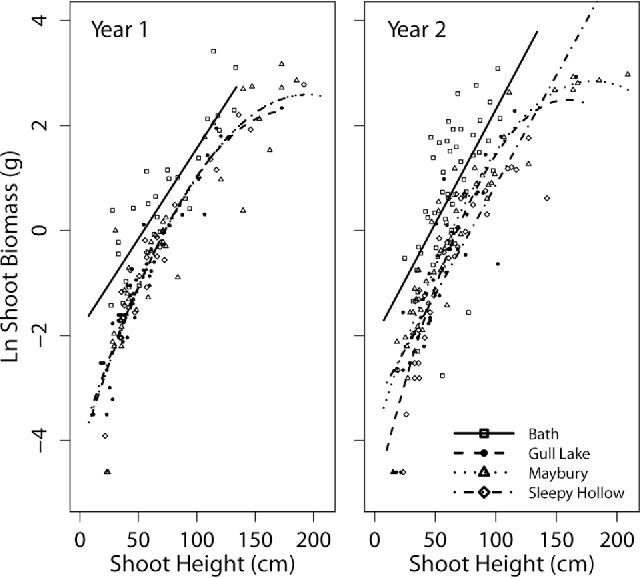 Elucidating the population dynamics of japanese knotweed using integral projection models