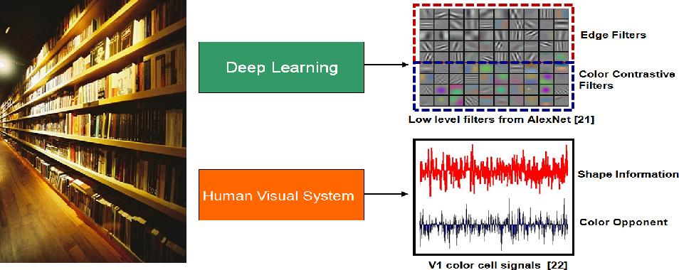 Figure 1 for Local Color Contrastive Descriptor for Image Classification