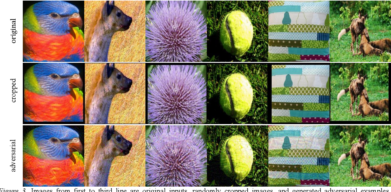 Figure 4 for Adversarial example generation with AdaBelief Optimizer and Crop Invariance