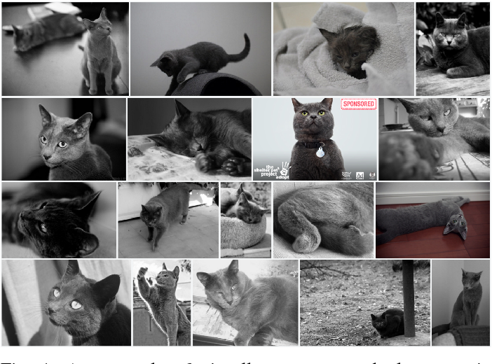 Figure 1 for Visual Congruent Ads for Image Search
