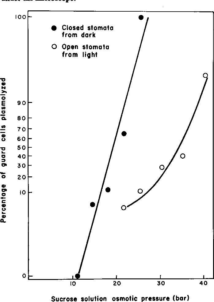 Figure 1 from Stomatal opening quantitatively related to