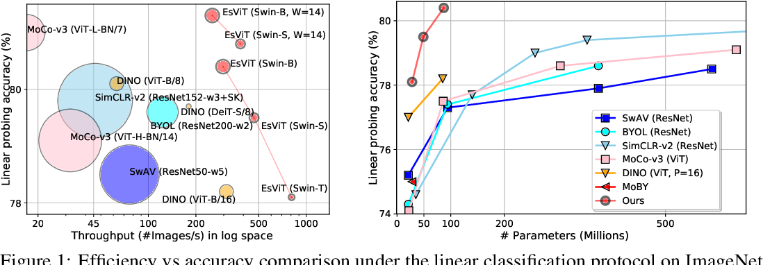 Figure 1 for Efficient Self-supervised Vision Transformers for Representation Learning