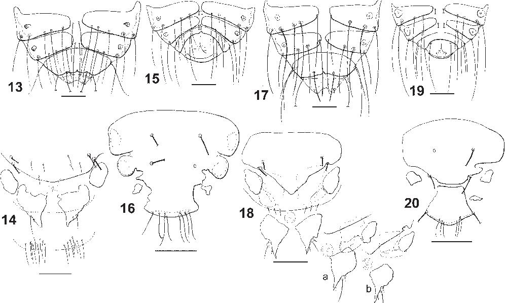figure 13–20