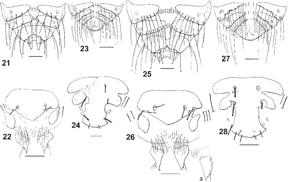 figure 21–28