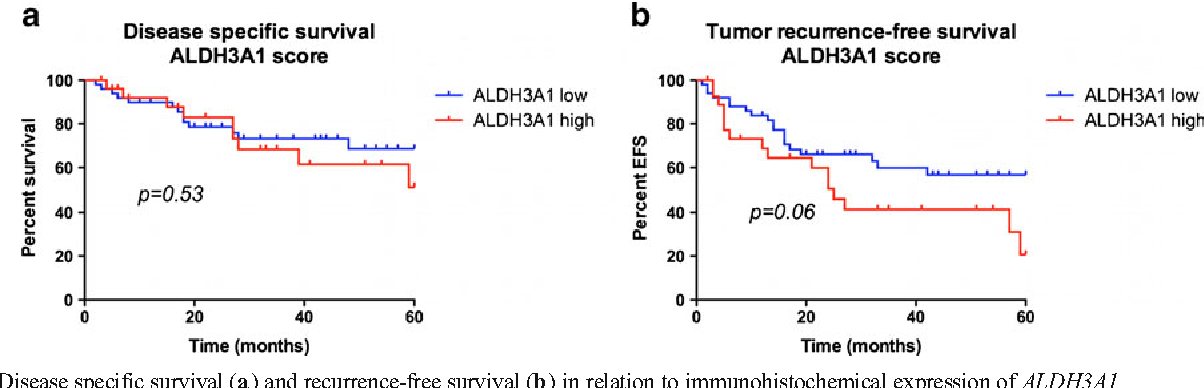 Fig. 6 Disease specific survival (a) and recurrence-free survival (b) in relation to immunohistochemical expression of ALDH3A1