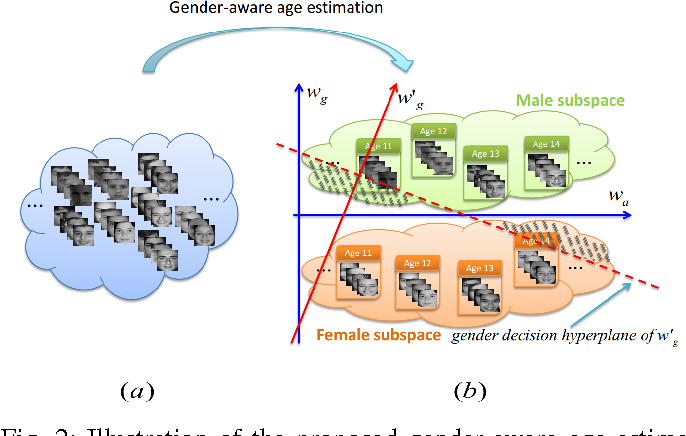 Figure 2 for A Unified Gender-Aware Age Estimation