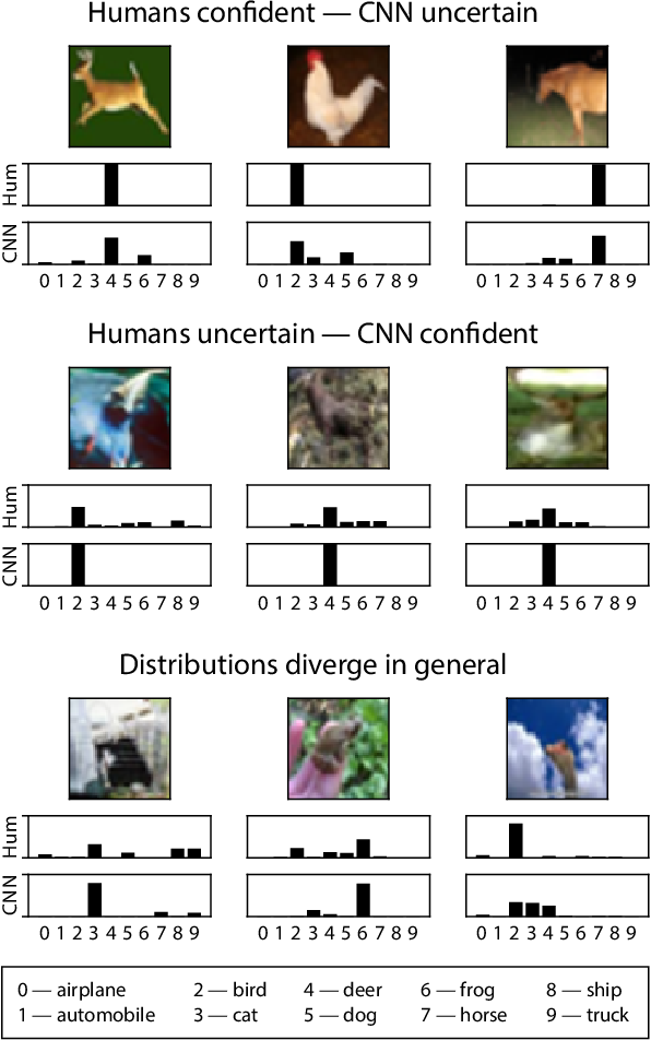 Figure 1 for Human uncertainty makes classification more robust