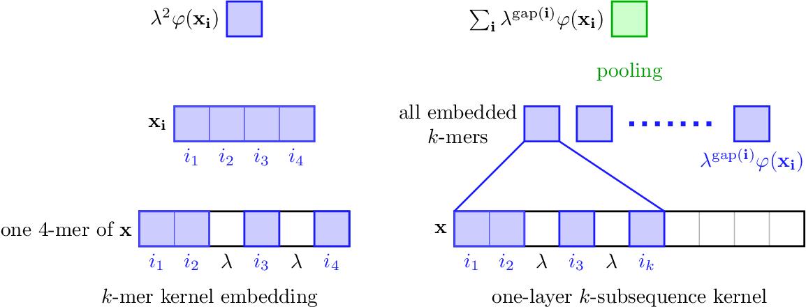 Figure 1 for Recurrent Kernel Networks