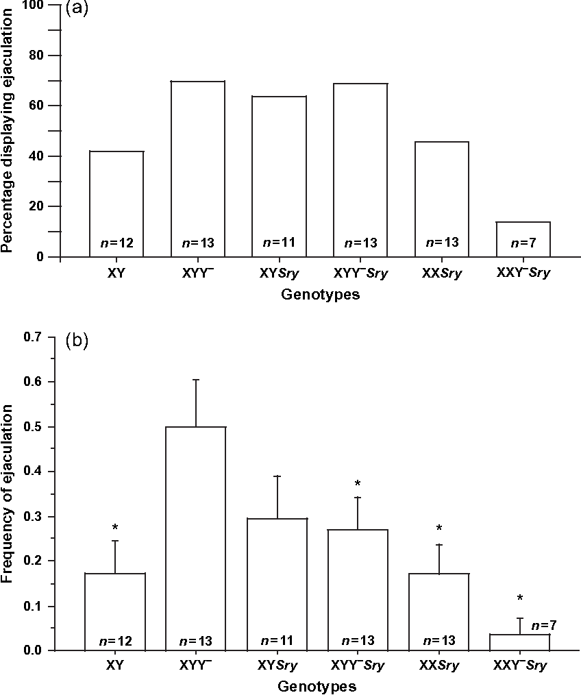 Effects Of Sex Chromosome Aneuploidy On Male Sexual Behavior