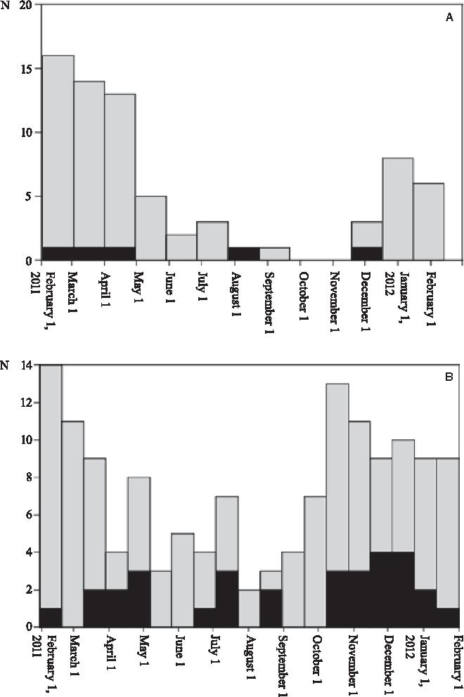 FIGURE 2. A, Seasonal distribution of positive rotavirus immunoassays (nosocomial cases in black). B, Seasonal distribution of PCR-proven respiratory tract pathogens (nosocomial cases in black).