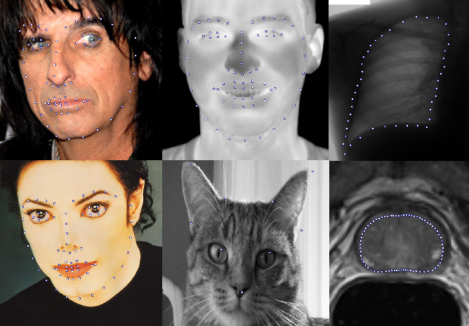 Figure 1 for Super-realtime facial landmark detection and shape fitting by deep regression of shape model parameters