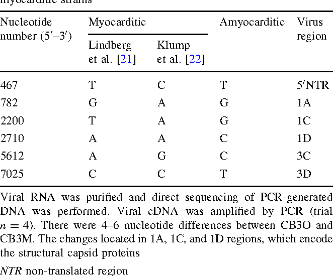 Table 1 Nucleotide differences between myocarditic and amyocarditic strains of coxsackievirus B3 and comparison with the known myocarditic strains