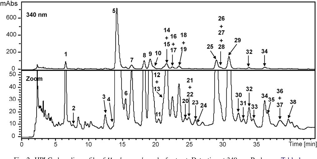 Fig. 2. HPLC phenolic profile of Hordeum vulgare leaf