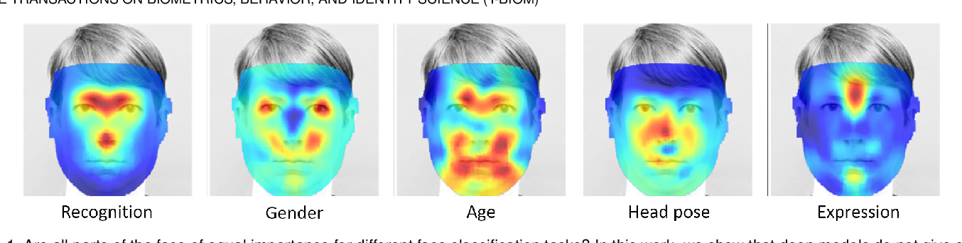 Figure 1 for Canonical Saliency Maps: Decoding Deep Face Models