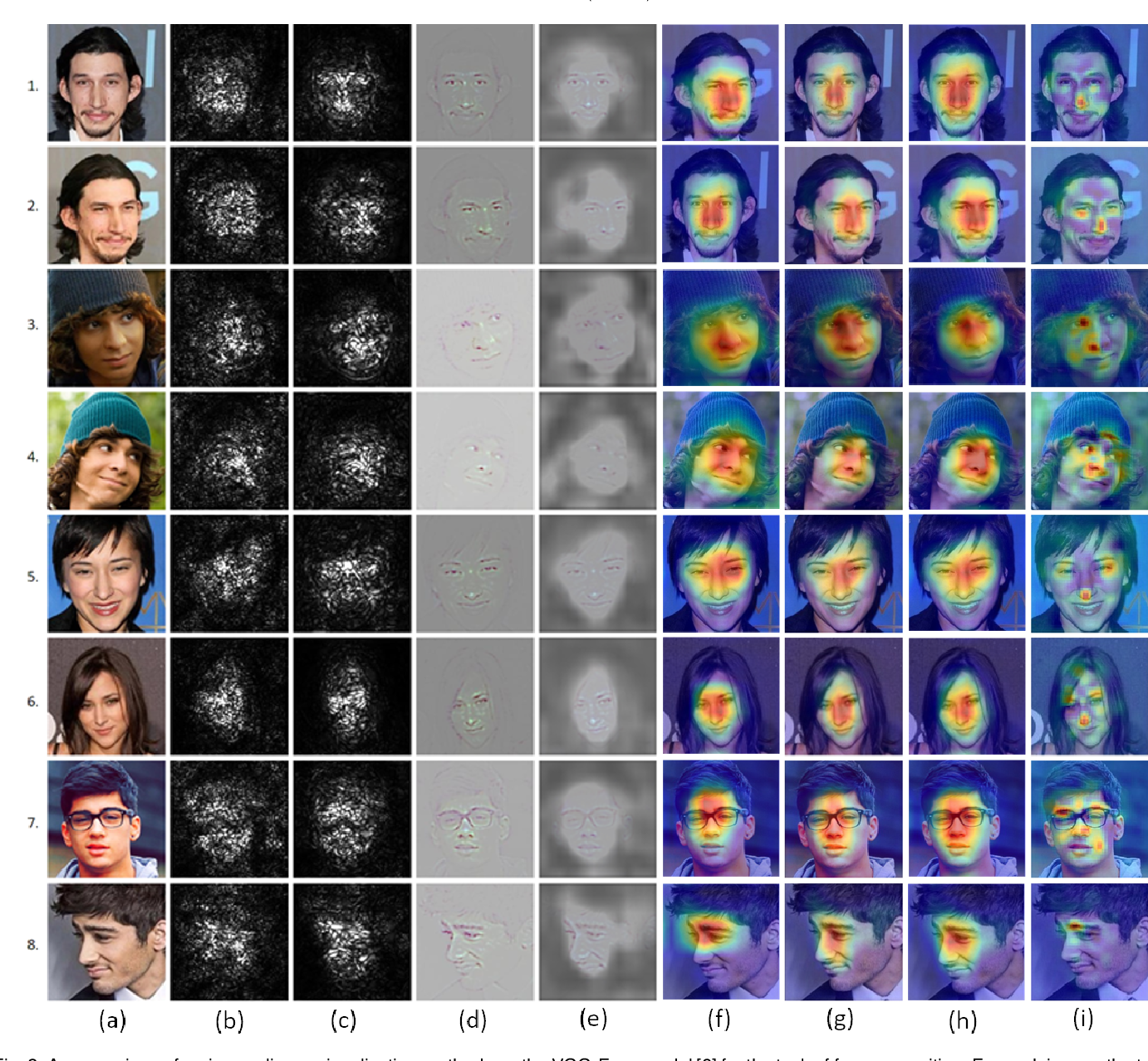 Figure 2 for Canonical Saliency Maps: Decoding Deep Face Models