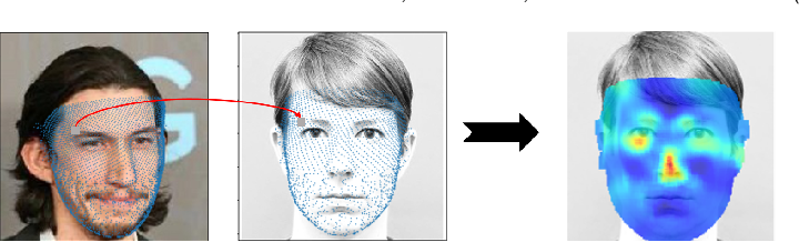 Figure 3 for Canonical Saliency Maps: Decoding Deep Face Models