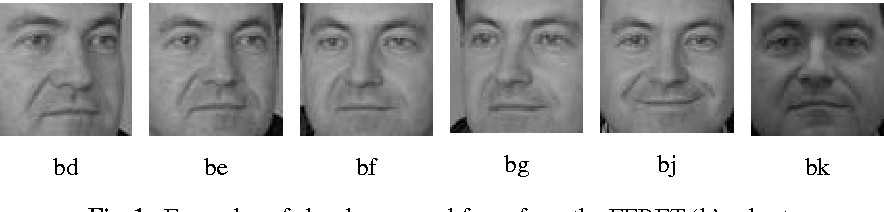Figure 2 for Sparse Coding and Dictionary Learning for Symmetric Positive Definite Matrices: A Kernel Approach