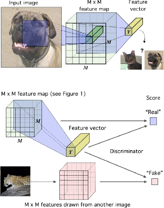 Figure 2 for Learning deep representations by mutual information estimation and maximization
