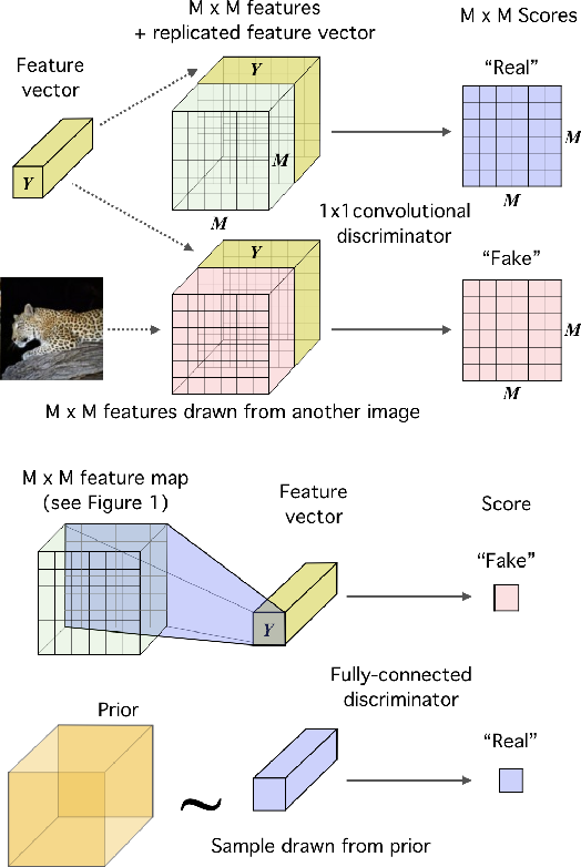 Figure 4 for Learning deep representations by mutual information estimation and maximization