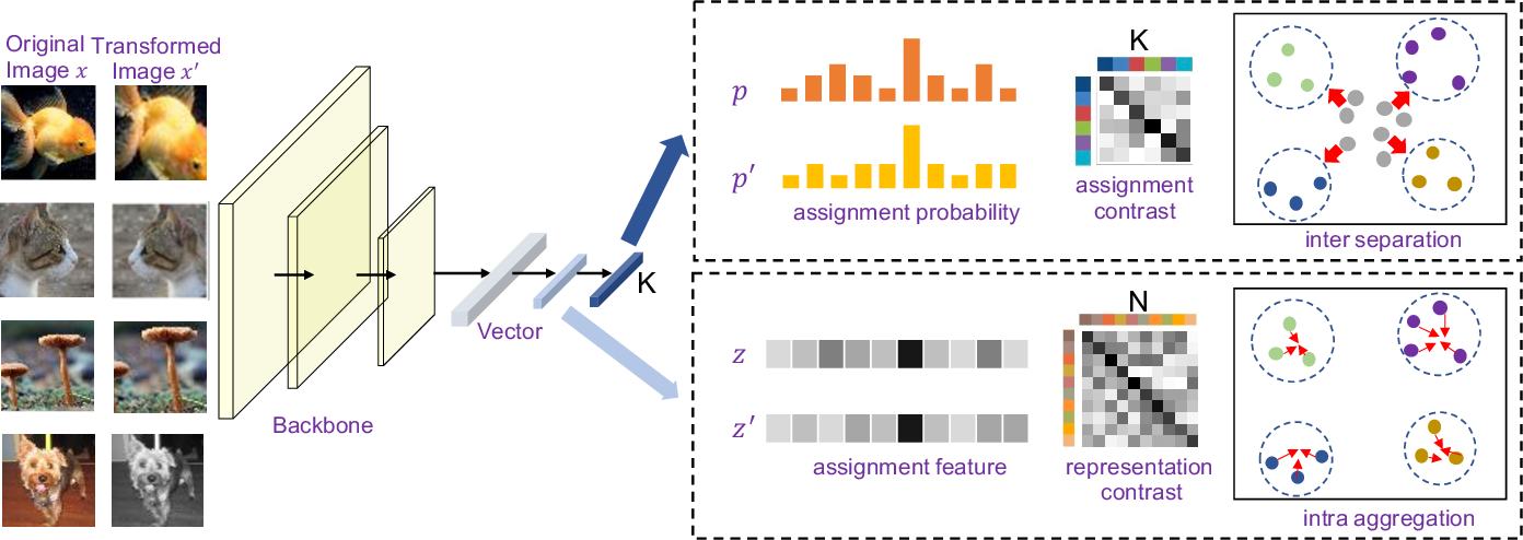 Figure 3 for Deep Robust Clustering by Contrastive Learning