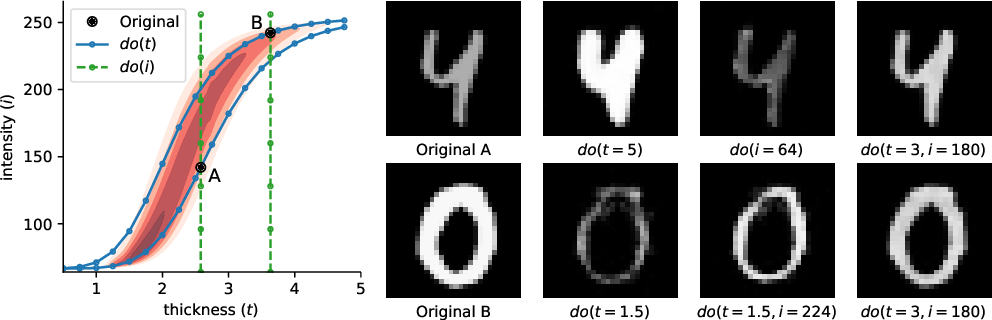 Figure 4 for Deep Structural Causal Models for Tractable Counterfactual Inference