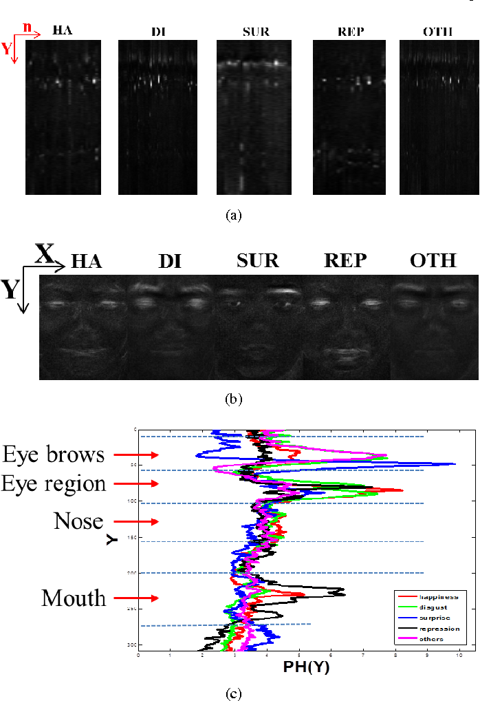Figure 3 for Spontaneous Facial Micro-Expression Recognition using Discriminative Spatiotemporal Local Binary Pattern with an Improved Integral Projection
