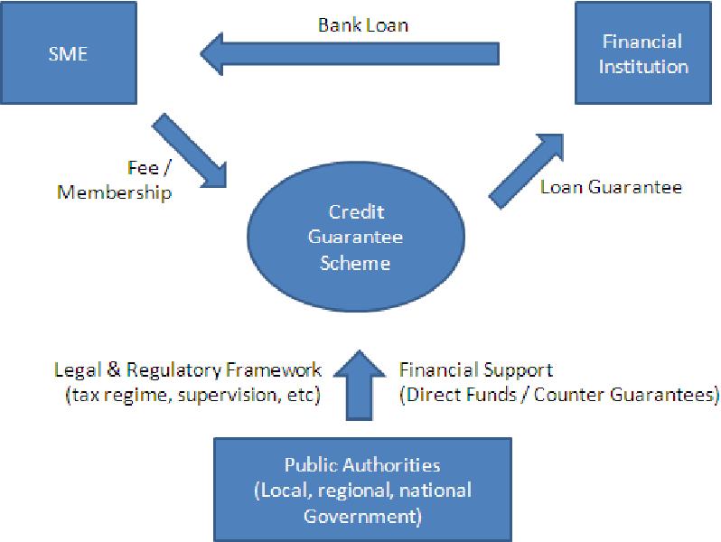 What is the enterprise finance loan guarantee scheme?