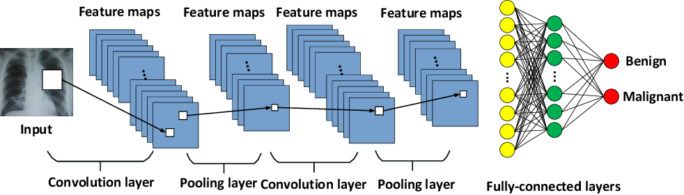 Figure 3 for A Survey on Domain Knowledge Powered Deep Learning for Medical Image Analysis