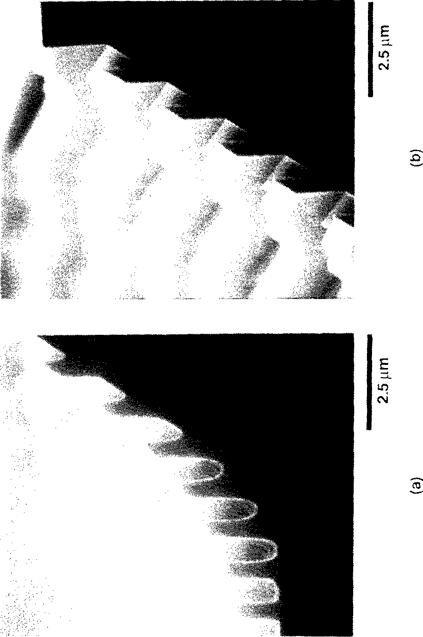Figure 6.10: SEMs of the measurement grating in Ray-PN: (a) At the bottom of the groove; and (b), at the top of the groove.