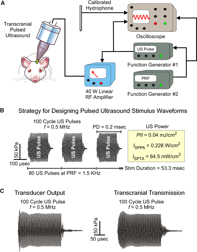 Transcranial Pulsed Ultrasound Stimulates Intact Brain Circuits Generator Circuit And Ultrasonic Buy Figure 1