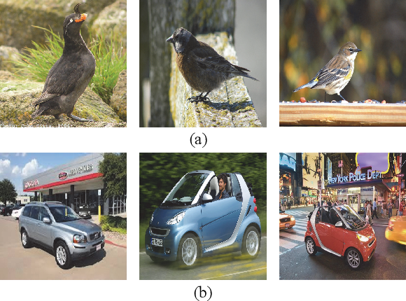 Figure 2 for Self-Taught Cross-Domain Few-Shot Learning with Weakly Supervised Object Localization and Task-Decomposition