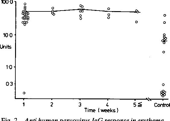 figure 2 from detection of antibodies to human parvovirus in rh semanticscholar org