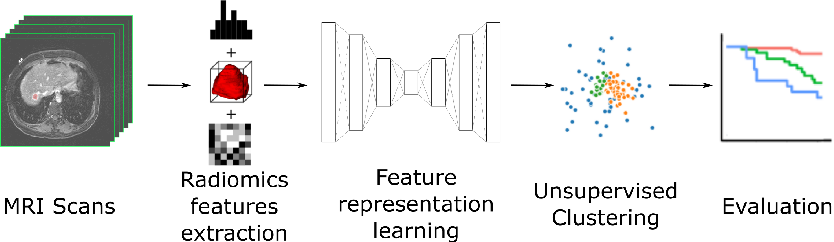 Figure 1 for Unsupervised Clustering of Quantitative Imaging Phenotypes using Autoencoder and Gaussian Mixture Model