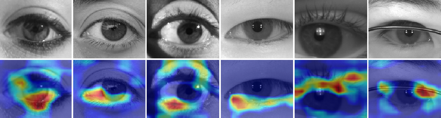 Figure 2 for Sex-Prediction from Periocular Images across Multiple Sensors and Spectra