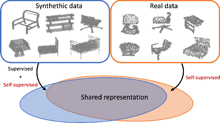 Figure 1 for Self-Supervised Learning for Domain Adaptation on Point-Clouds