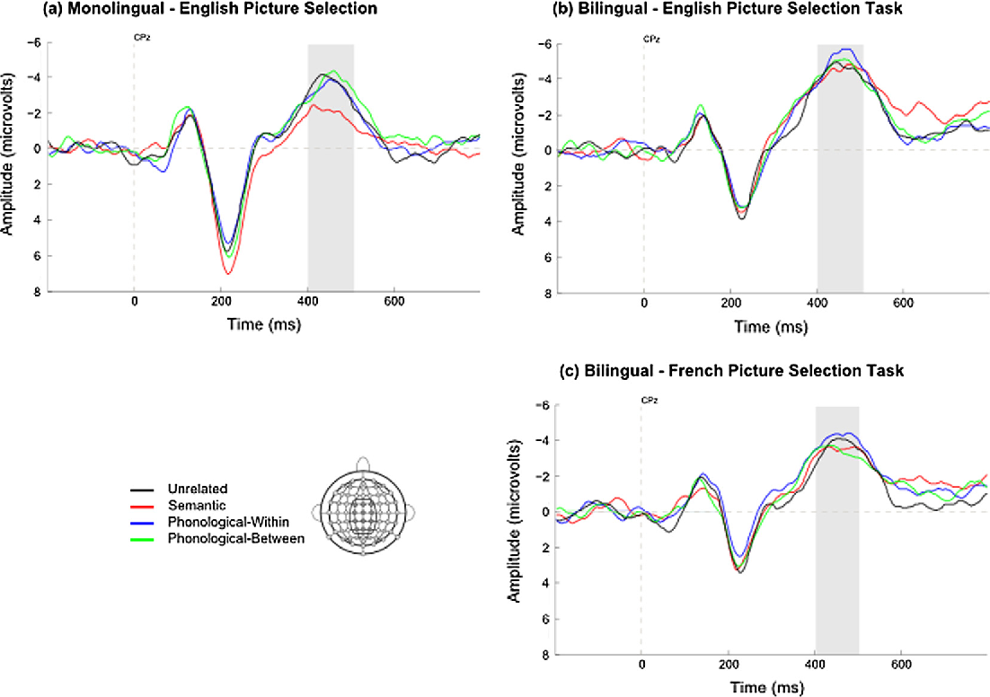 difference between monolingual and bilingual