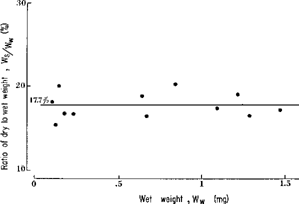Fig. 5. Variation of the ratio, Ws/Ww, with the wet weight, W w . The average value is 17.7%