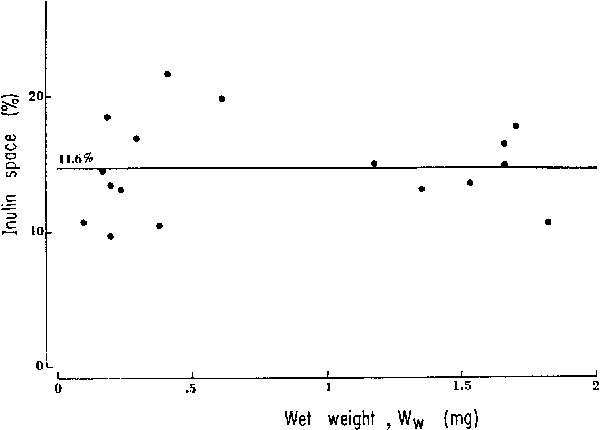 Fig. 6. Inul in space as a percentage of total wet weight. The average value is 14.6%