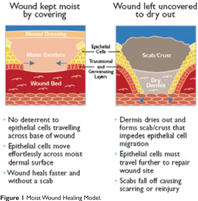 PDF] A review of wound management materials - Semantic Scholar
