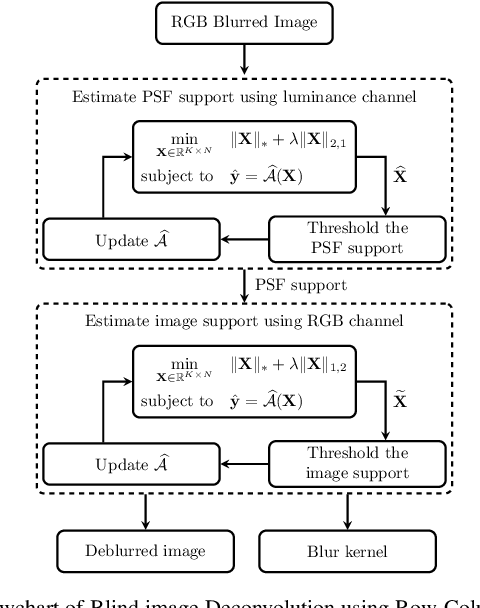 Figure 1 for Blind Image Deblurring Using Row-Column Sparse Representations