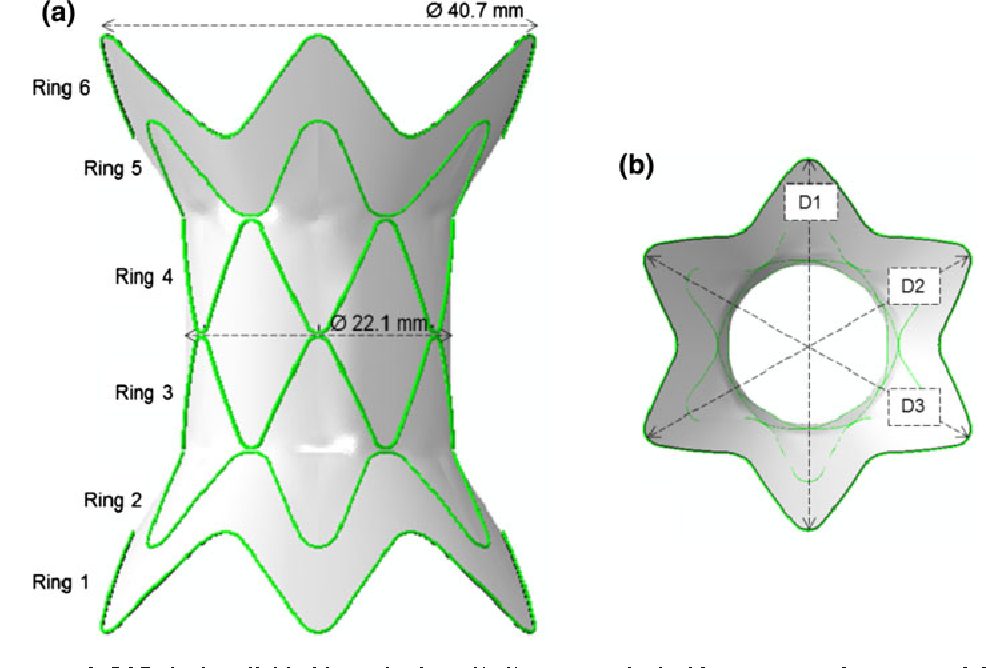 FIGURE 1. (a) Stent-graft CAD design divided into six rings (1–6), symmetrical with respect to the centre of the device; (b) three main diameters (D1, D2 and D3) can be identified for each section.