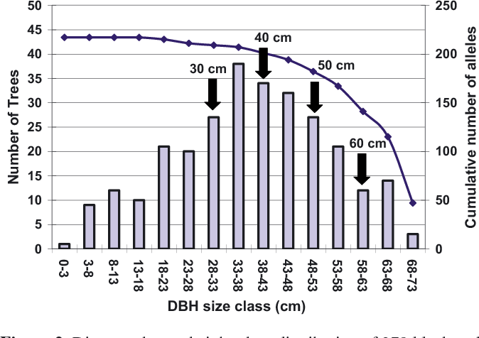 Genetic consequences of harvest in a mature second-growth