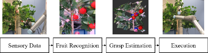 Figure 1 for Real-Time Fruit Recognition and Grasping Estimation for Autonomous Apple Harvesting