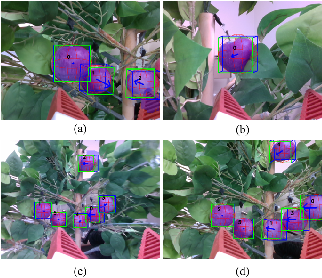 Figure 4 for Real-Time Fruit Recognition and Grasping Estimation for Autonomous Apple Harvesting